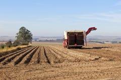 De maaimachine van de aardappel royalty-vrije stock afbeeldingen