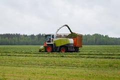De maaimachine verzamelt droog gras aan de vrachtwagen in een gebiedshoogtepunt van groen gras stock foto's