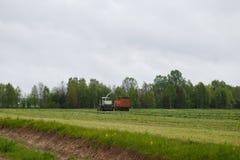 De maaimachine verzamelt droog gras aan de vrachtwagen in een gebiedshoogtepunt van groen gras stock afbeelding