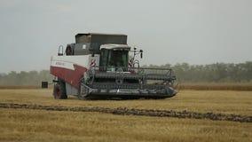 De maaimachine voor het oogsten van korrelgewassen gaat op het gebied stock footage