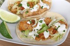 De Maaltijd van de Taco van vissen stock afbeeldingen
