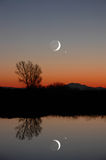 De Maan van de winter en Eenzame Boom Royalty-vrije Stock Afbeeldingen