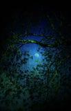 De maan van Fairytale Royalty-vrije Stock Foto