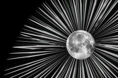 De maanillustratie van de rooster stock illustratie