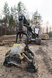 De machine van de bosbouwmaaimachine Het Felling van hoofddetail Het programma openend beschadigd hout royalty-vrije stock afbeelding
