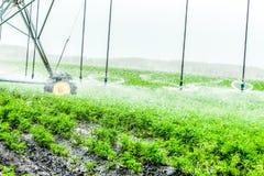 de machine van de landbouwirrigatie stock foto's