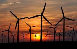 De macht van de wind Stock Fotografie