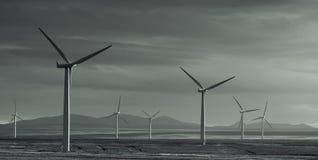 De Macht van de wind Royalty-vrije Stock Afbeeldingen