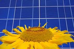 De macht van de zon Stock Foto