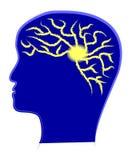 De macht van hersenen Stock Afbeeldingen