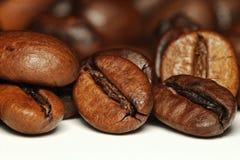 De Macro van de Boon van de koffie Royalty-vrije Stock Fotografie