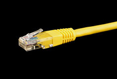 De Macro van de Kabel van Ethernet Royalty-vrije Stock Afbeelding