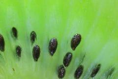 De macro van de kiwi royalty-vrije stock afbeeldingen