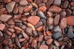De Macro van de rotsen van het Park van Erickson van het leven Royalty-vrije Stock Foto's