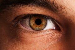De macro van het oog stock foto