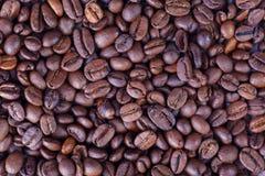 De Macro van koffiebonen Stock Foto