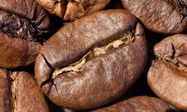 De Macro van koffiebonen Stock Afbeelding