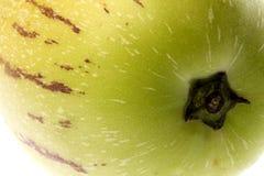 De Macro van Pepino van Dulce (de Peer van de Meloen) Royalty-vrije Stock Fotografie