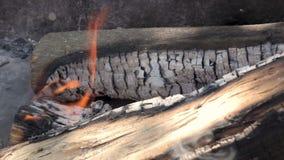 De madeira ardente entra a chaminé filme