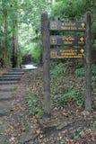 De madeira assine dentro Pong Duet Hot Springs imagens de stock