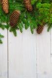 De madeira branco dos cones dos galhos do abeto vermelho do fundo do Natal Imagem de Stock Royalty Free