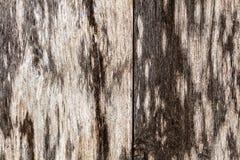 De madeira velho Fotografia de Stock Royalty Free