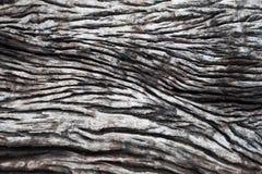 De madeira velho sem emenda Imagens de Stock Royalty Free
