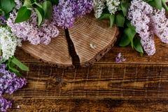 De madera durmió con una grieta hermosa en ella, rodeado por una dispersión de las flores de la lila Foto de archivo libre de regalías