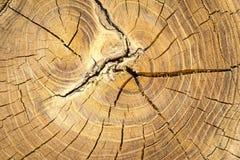 De madera resistida Foto de archivo