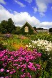 De magische tuin van de lente met bloemen en huis, Lanhyd Stock Afbeeldingen