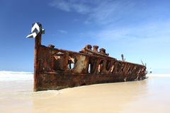 De Maheno-schipbreuk, Fraser Island, Queensland, Australië Stock Foto's