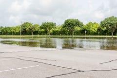 30 de maio de 2015 - Beverly Kaufman Dog Park, Katy, TX: Floo ereto Foto de Stock