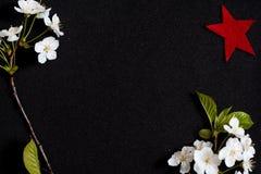 9 de maio em um fundo preto, flores de cerejeira Estrela vermelha um símbolo da vitória honra do 9 de maio Foto de Stock