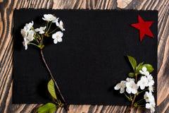 9 de maio em um fundo preto, flores de cerejeira Estrela vermelha um símbolo da vitória honra do 9 de maio Imagens de Stock