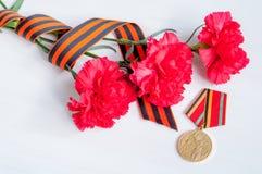 9 de maio fundo festivo de Victory Day - medalha do jubileu da grande guerra patriótica com os cravos e a fita vermelhos de St Ge Fotografia de Stock Royalty Free