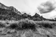 De majesteit van Zion National Park stock fotografie