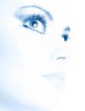 De make-up van de schoonheid Royalty-vrije Stock Afbeelding
