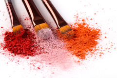 De make-upborstels met blozen of oogschaduw van roze, rood en koraaltonen op witte achtergrond wordt bestrooid die stock fotografie