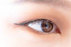 De make-upkunstenaar past Mooi vrouwengezicht toe stock afbeelding