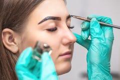 De make-upkunstenaar past verfhenna op wenkbrauwen in een schoonheidssalon toe royalty-vrije stock afbeelding