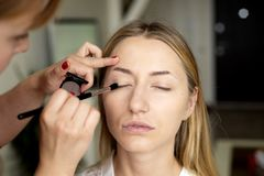 De make-upkunstenaar zet make-up op het gezicht van het meisje royalty-vrije stock afbeeldingen