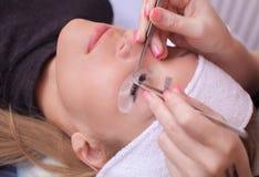 De make-upmeester verbetert, en versterkt wimpersstralen, standhoudend een paar pincet royalty-vrije stock afbeelding