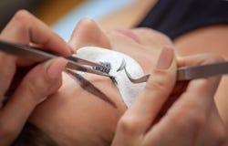 De make-upmeester verbetert, en versterkt wimpersstralen, standhoudend een paar pincet in een schoonheidssalon royalty-vrije stock foto
