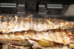 De makreel wordt geroosterd op een elektrische grill Geroosterde vissen met citroen en salade royalty-vrije stock fotografie
