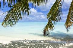 De Maldiven - een reis aan paradijs ter wereld Stock Afbeelding