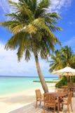 De Maldiven, het tropische restaurant van de strandbar stock foto