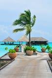 De Maldiven, Onthaal aan Paradijs! stock afbeeldingen