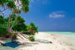 De Maldiven, wit zand, palmen stock afbeeldingen