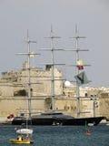 De Maltese Valk Stock Foto's