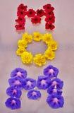 ` de MAMAN de ` de Word disposé des fleurs Images libres de droits